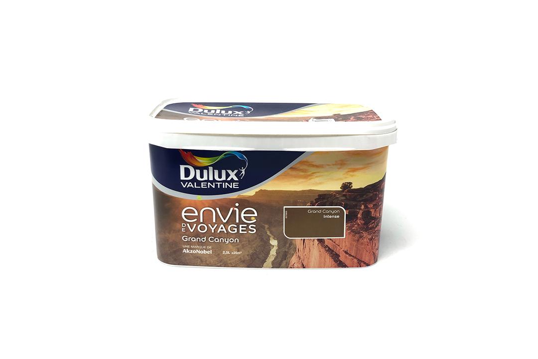 Peinture Envie De Voyage Dulux Valentine Grand Canyon